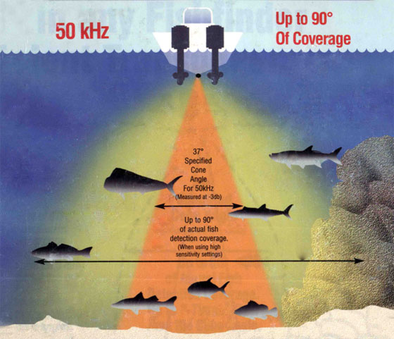 Здесь представлена схема 50 кГц луча эхолота